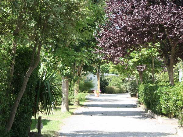 Camping le grand jardin for Le grand jardin in notre dame de monts
